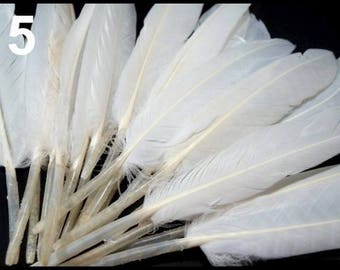 05 - 9-14 cm White Duck feathers
