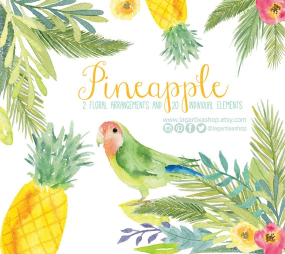 Pineapple parrot Watercolor clipart Floral PNG hawaiian