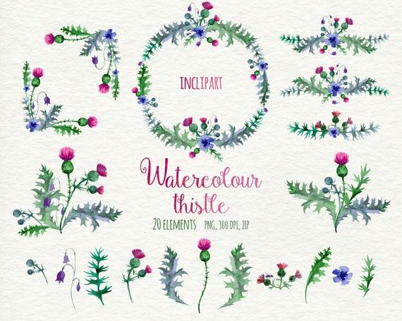 Watercolor Thistle Wreath Corner Elements Clip Art Hand