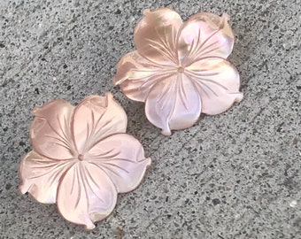 Carved shell flower post earrings
