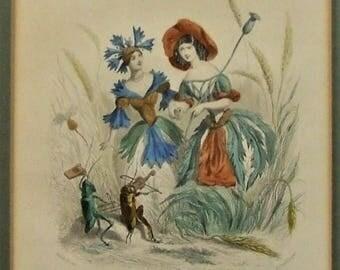 4 antique engravings Les Fleurs Animées  Grandville 1867 erotic small art art teacher lawyer lover solicitor Mothers Day wife gardener gift