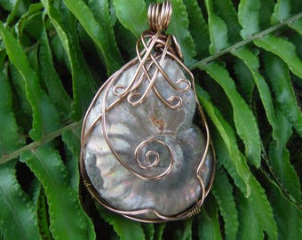 Opalized ammonite, Opal ammonite, Ammonite pendant, Ursula necklace