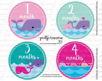 Month by Month Baby Girl Stickers - Whale