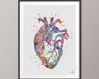 Heart Anatomy Watercolor Print Cardiology Decor Medical Art Print Science Art Print Laboratory Wall Decor Doctor Print Nerd Wall Hanging-969