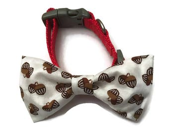 Dog collar bow tie, dog collar bow, acorn dog collar bow, dog bow tie, puppy collar bow tie, puppy bow tie, fall time collar bow, acorns