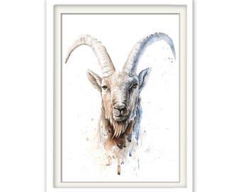 Poster Zodiac Sign Capricorn