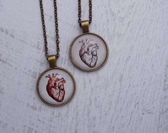Anatomical Heart Necklace, Halloween Jewelry, Gift for Nurse, Gift for Doctor, Realistic Anatomical Human Heart Pendant, Anatomical Art