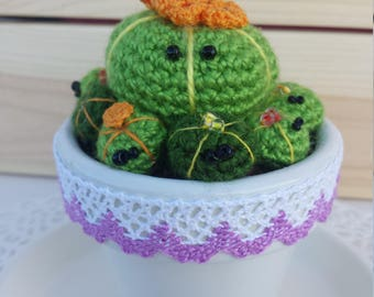 family cactus medium crochet