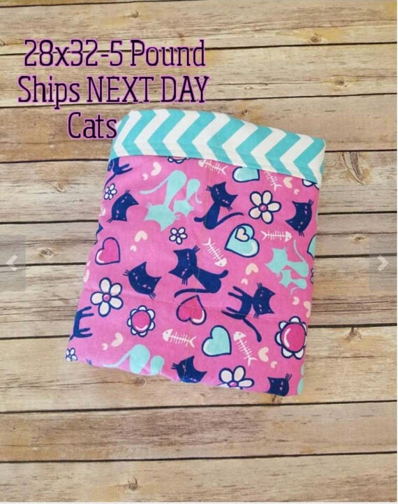 Kitty, Cat, 5 pound, WEIGHTED BLANKET, Ready To Ship, 5 pounds, 28x32 for Autism, Sensory, ADHD, Calming, Anxiety,