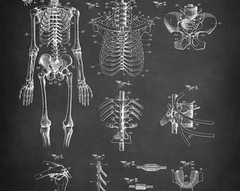 Vintage Skeleton Patent Art Print - Anatomical Skeleton Patent Art Print - Chiropractic Demonstrating Equipment Patent Art Print - Skeleton