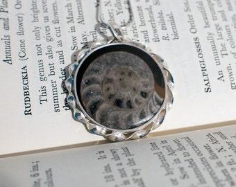 Ammonite pendant, fossil pendant, fossil jewellery, hand made jewellery, hand made pendant