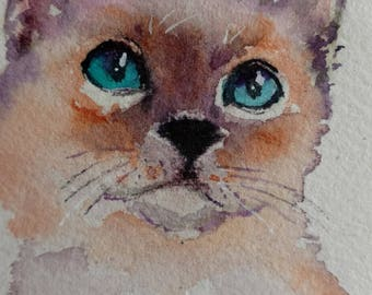 siamese kitten cat ACEO original WATERCOLOR