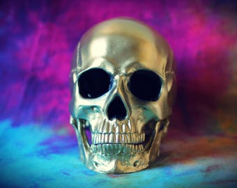 Hand Painted Golden Realistic Faux Human Skull Replica with Removable Jaw