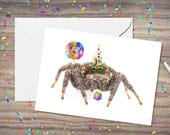 Birthday Jumping Spider, animal hat, birthday card funny, for boyfriend, jumping spider gift, spider gift, jump spider, gag gift, spider gag