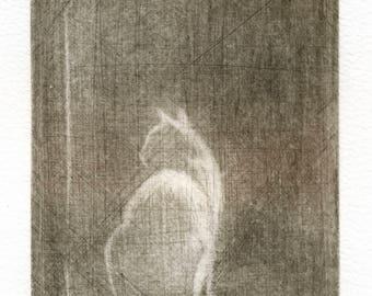 """Ghost"" engraving. Ghost. Mezzotint. Mezzotint. Cat print. Cats. Printmaking. Prints and etchings."