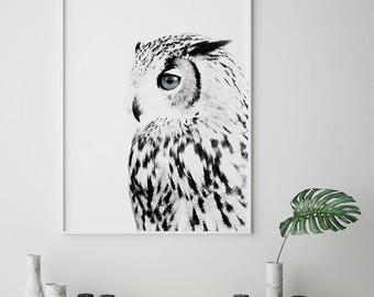 Owl Print, Snowy Owl, Scandinavian Print, Nordic Print, Black and White Art, Animal Print, Scandinavian, Affiche Scandinave,Digital Wall Art