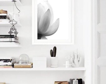 Lotus print floral decor, flower photography, black and white floral wall art, minimalist floral print download large wall art print