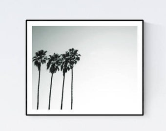 Palm trees poster, palm trees photo, palm trees art, palm trees wall art, palm trees decor, palm trees download, palm trees photography