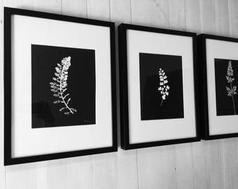 Black Botanical Prints, Set of 3 prints, Hand pressed botanical, real botanicals, black wall art, black botanical set, botanical decor