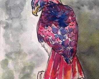 Watercolor Hawaiian Hawk