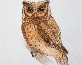 Watercolor and Ink Owl Painting - Professional Giclee Reproduction Print 8x10