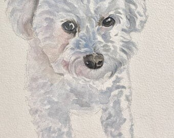 Maltese Dog Greetings Card