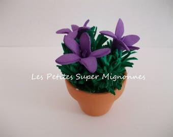 Miniature: mini Campanula flower pot
