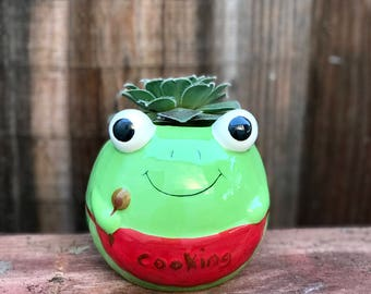 Cute ceramic cooking FROG succulent planter (PLANT INCLUDED) - Adorable animal planter
