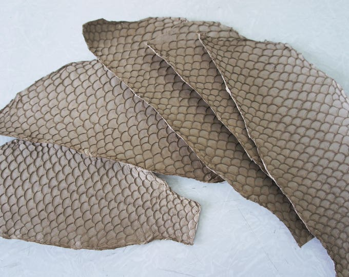 leather made of janitor fish skin Processing shark skin into rawhide by dino labiste if you live near the ocean, there is bound to be a fishing port somewhere along the coast.