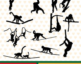 Monkeys II  silhouettes sale, eps, svg, png and jpg files high resolution CL-SP-050