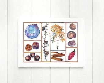 Nature Print, Botanical Art Print, Nature Gifts, Botanical Poster, Nature Wall Art, Plants Print, Nature Illustration, Botanical Wall Art