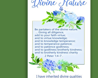 Young Women's Value Poster for Divine Nature
