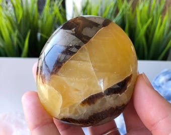 Septarian Dragon Stone Large Palm Stone