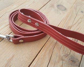 "Dog leash made of used firehose Type ""Fikkie"""