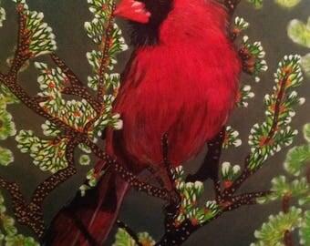 No: 133 Cardinal