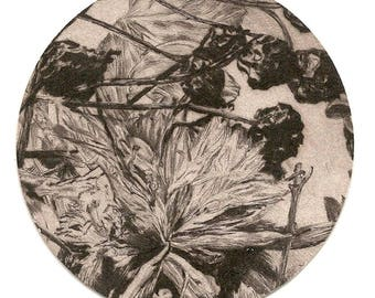 Original etching printed on cardstock of beer / original art engraving printed on coaster MaisonMertens