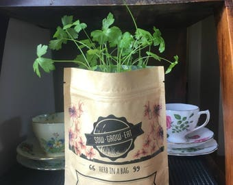 Parsley Herb in a Bag, Organic Seeds, Birthday Gift