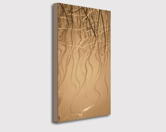 Semi Abstract Nature Wrapped Canvas Photo Print, Golden Reeds Reflection in Water