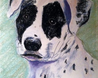 Spotted Black and White Dog, pastel painting, framed ready to hang, collectible pet portrait artist