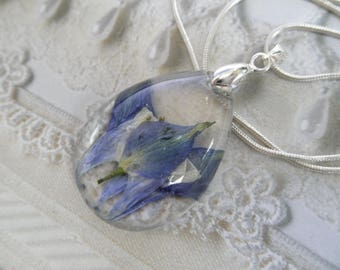 Colorado Blue Columbine Encased In Glass-Teardrop Pendant-Colorado State Flower-Nature's Art-Colorado Inspired-Gifts Under 35