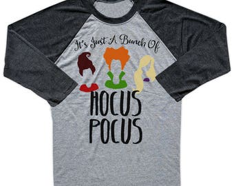 Hocus Pocus Shirt, Hocus Pocus Raglan, Sanderson Sister TShirt, Halloween Shirt, Winifred Shirt, Hocus Pocus Clothing, Winifred Raglan