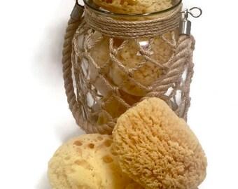 Sea Sponges - Natural Sea Sponge - Bath Sponge - Facial Sponge - Tropical Sponge - Dead Sea Sponge - Spa Accessories