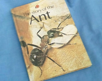 Vintage Ladybird Book - The story of the Ant - Series 651 - Matt Covers - 60p - A Natural History Book