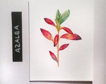 Azalea Sprig / Watercolor Illustration / Mini Print / Botanical Illustration / Art Print / Giclée Print / Wall Art / Home Decor