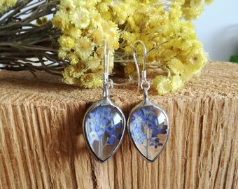 gifts for woman, forget me not earrings, terrarium jewelry, bridesmaid gift, Flower earrings,pressed flower earrings