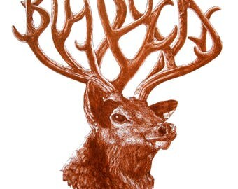 "Big Bucks - Fine Art Giclee print of original deer illustration pen and ink sienna drawing - 6"" x 8"""