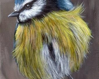 SALE Bird Art Painting Blue Tit SFA Wildlife Original hand painted bird acrylic painting by Australian Artist Janet M Graham