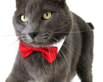 Red Bow Tie, Necktie, or Bow on a Shirt Style Collar for both Dogs & Cats