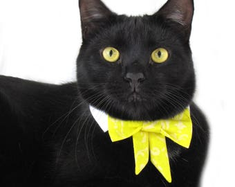 Lemon Metallic Damask Bow Tie, Necktie, or Bow on a Shirt Style Collar for both Dogs & Cats