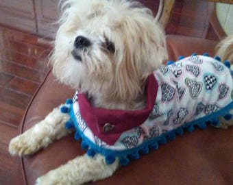 King or Queen of Hearts Custom Dog Poncho: Quality, Reversible Dog Clothes for All Seasons